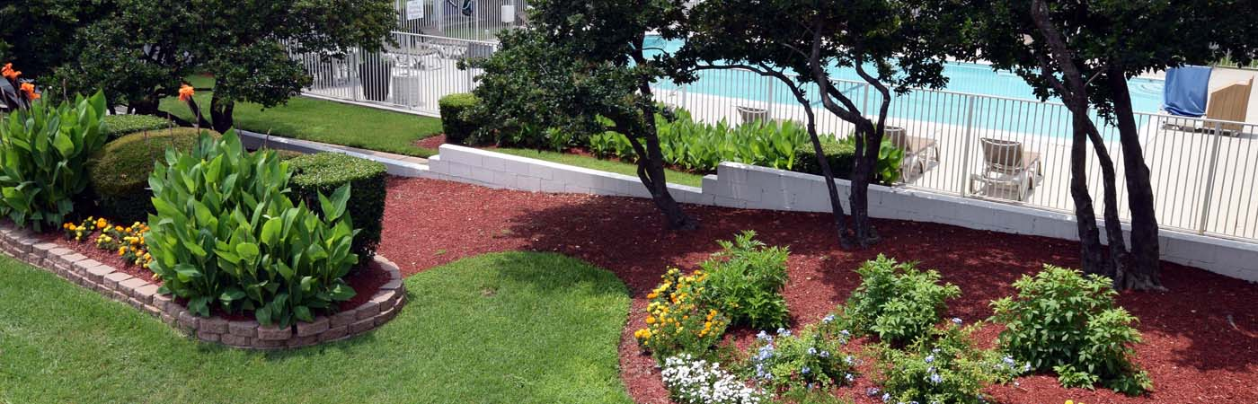 The greener side round rock texas landscaping for Complete garden services